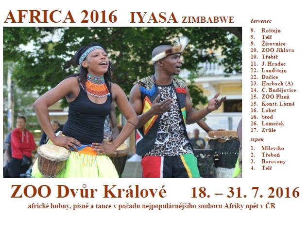 Africa 2016 - Iyasa v ZOO Dvůr Králové