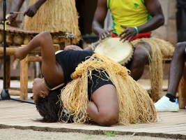 Africký festival v ZOO Dvůr Králové začíná už tuto sobotu