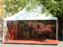Keňský víkend v zoo