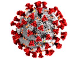 Antigenní testy pro širokou veřejnost startují ve čtvrtek