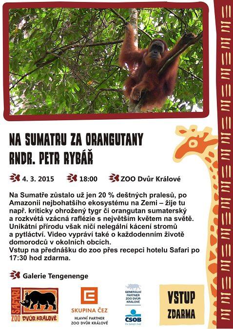 Přednáška Na Sumatru za orangutany