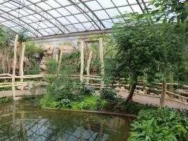 Safari Park Dvůr Králové představil nově zrekonstruovaný pavilon Ptačí svět