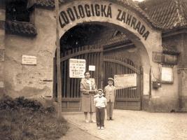 Safari Parku Dvůr Králové je 75 let. Ze skromného zookoutku se stalo zařízení světového významu. Zdroj foto: archív ZOO Dvůr Králové