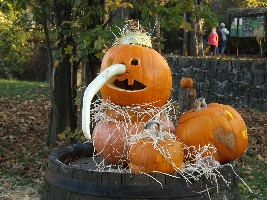 Týden duchů v ZOO Dvůr Králové začíná 24. října