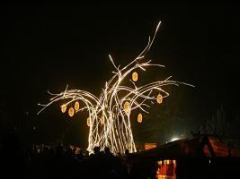 Vánoční zoo ve Dvoře Králové má letos novinku – mohutný vánoční baobab. Foto (c) Andrea Jiroušová