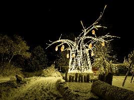 Vánoční zoo ve Dvoře Králové začne v sobotu 15. prosince. Foto (c) Lukáš Pavlačík