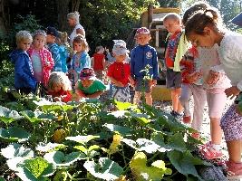 deti-z-materske-skoly-sklidily-urodu-v-safari-parku-dvur-kralove