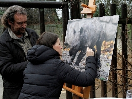 Emilka je nové jméno pro mládě nosorožce dvourohého. Foto (c) Simona Jiřičková