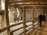 Nový pavilon žiraf je otevřen návštěvníkům