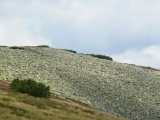 Kamenné pole