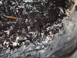 Krycí zemina prorostlá myceliem (podhoubím)