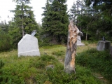 Pozůstatky původní lanovky z Růžové hory na Sněžku